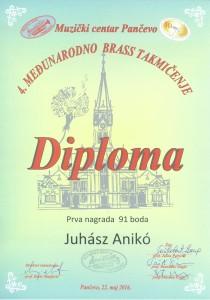 Juhász Anikó